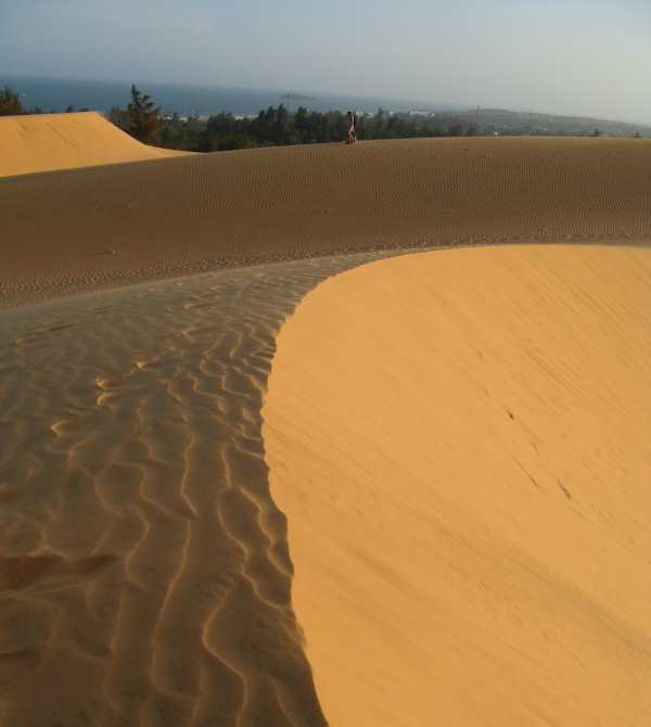 Shadows on the dunes, Mui Ne