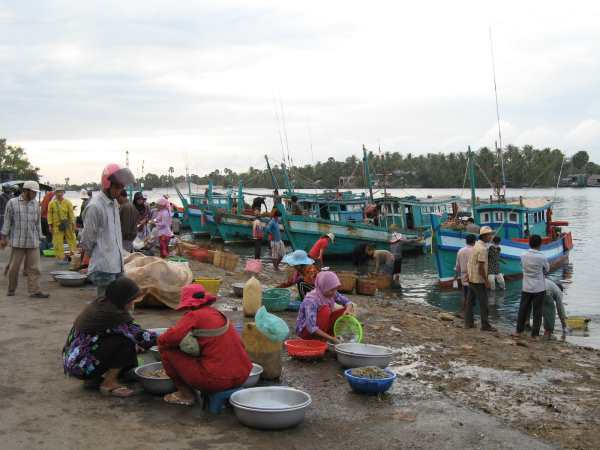 Fish market at Kampot.